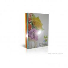 Кольоровий папір А4 Spektra Color 80 г/м² 250 арк mix